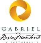 Logo Gabriel Resources